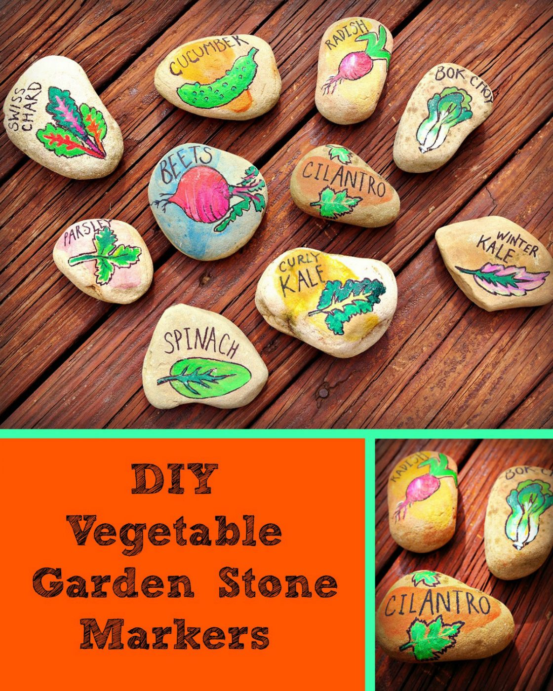 Diy vegetable garden stone markers painted pomegranate for Diy vegetable garden